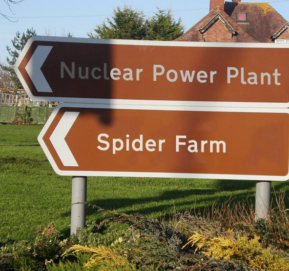 nuclear spiders